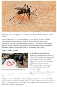 komary.jpg