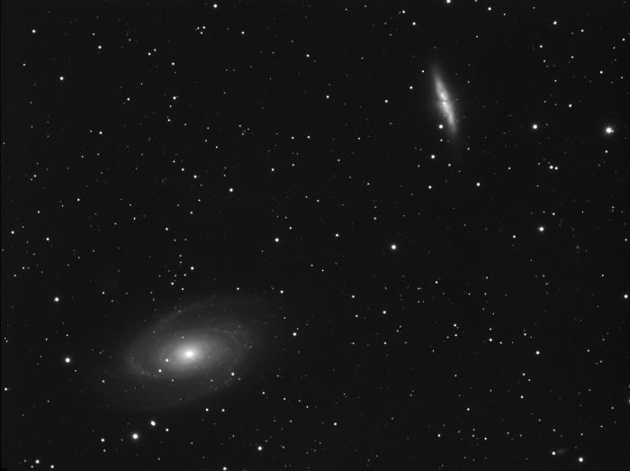 L M81.jpg