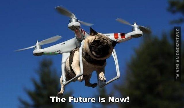 pies dron.jpg