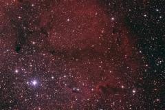 17. eTrunk, wybrane cytaty z IC1396 - MarcinPc.jpg