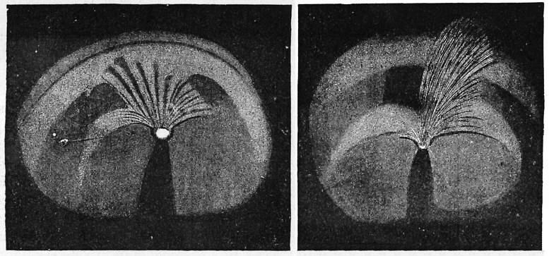 Głowa komety z 1861 r