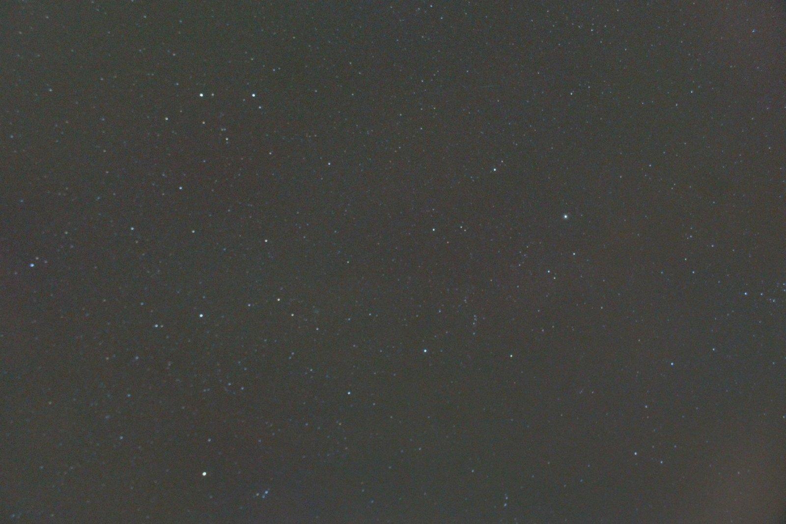 DSC01356 (2).jpg