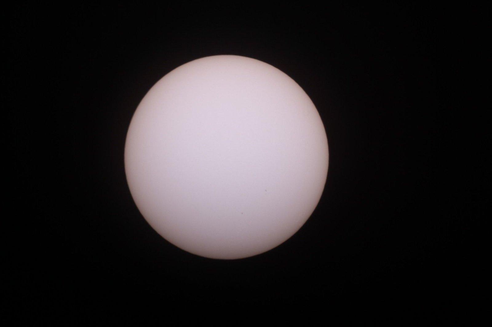Sun_17_05.19_1313.thumb.jpg.e9394bf9af45874c662852241ac6793c.jpg