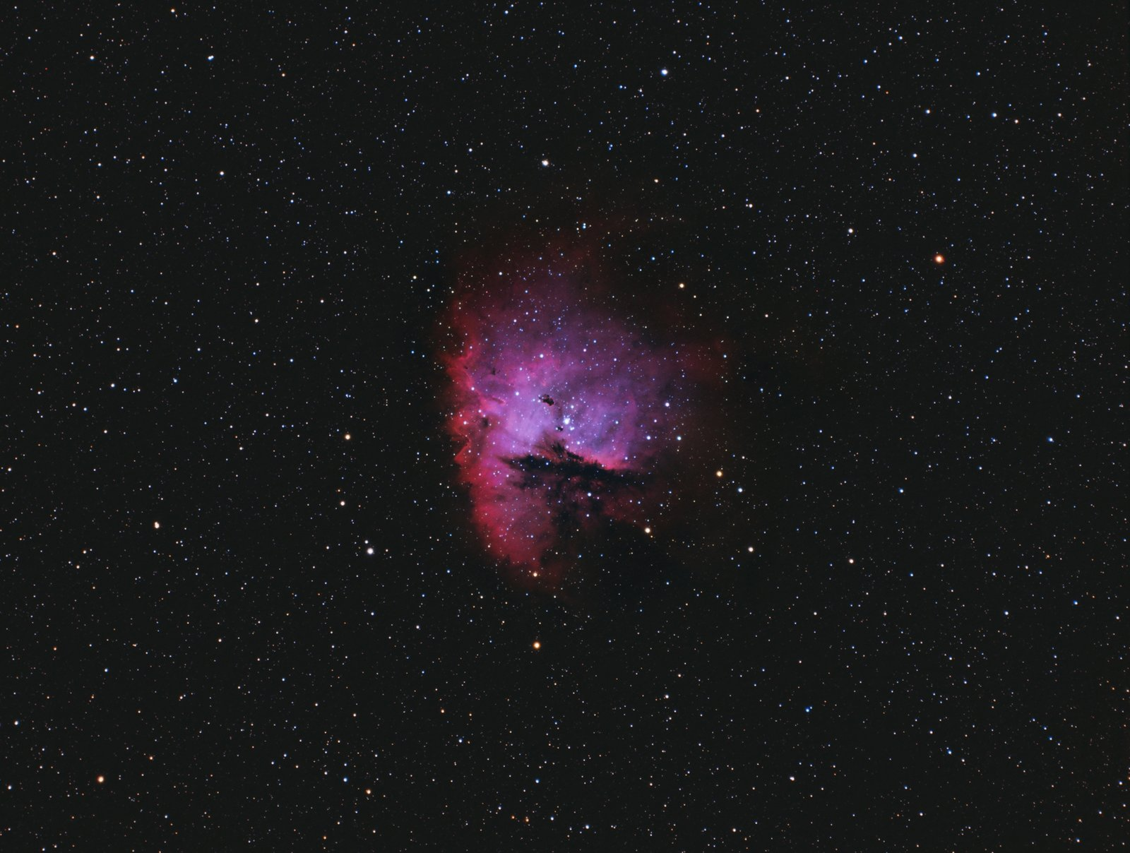 COLOR 5 small jpg.jpg