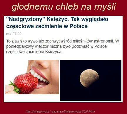 Tworczosc_literacka.jpg