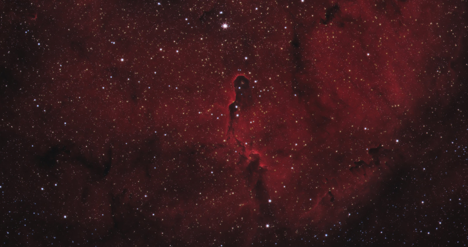 COLOR-2-jpg.jpg