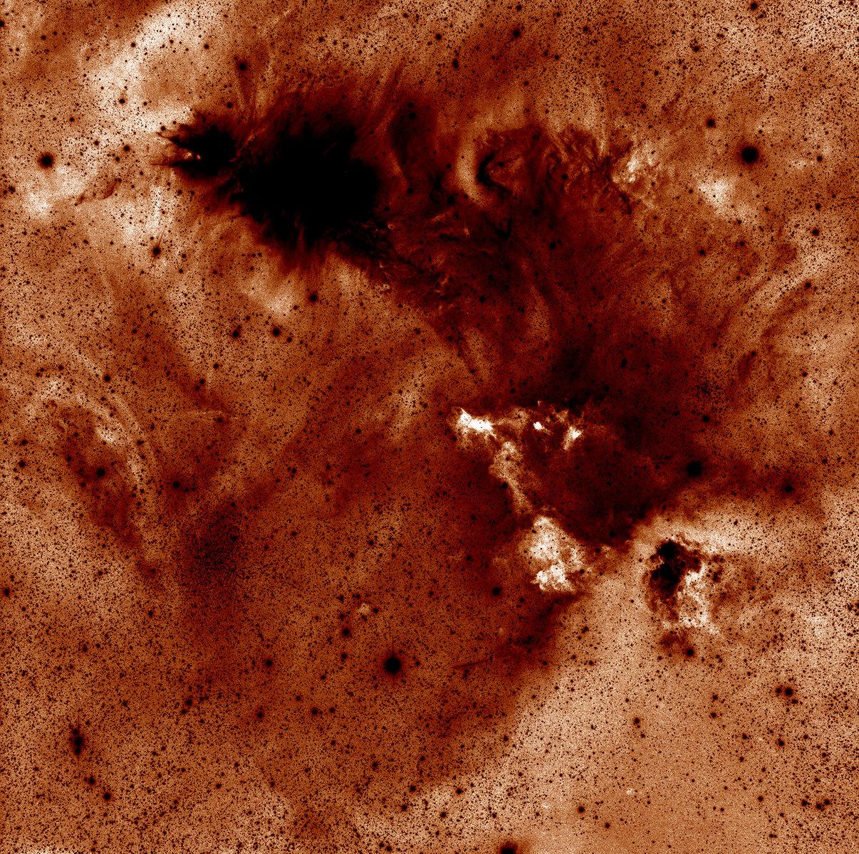 5a05bec29d6b6_NGC2264j1800.thumb.jpg.a96d60748db61c03bd7b5fe5e81a5d5f.jpg