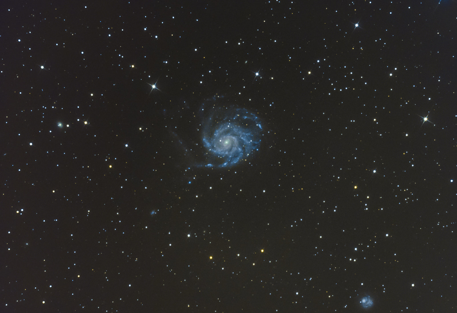 M101_surówka_obr-24.jpg