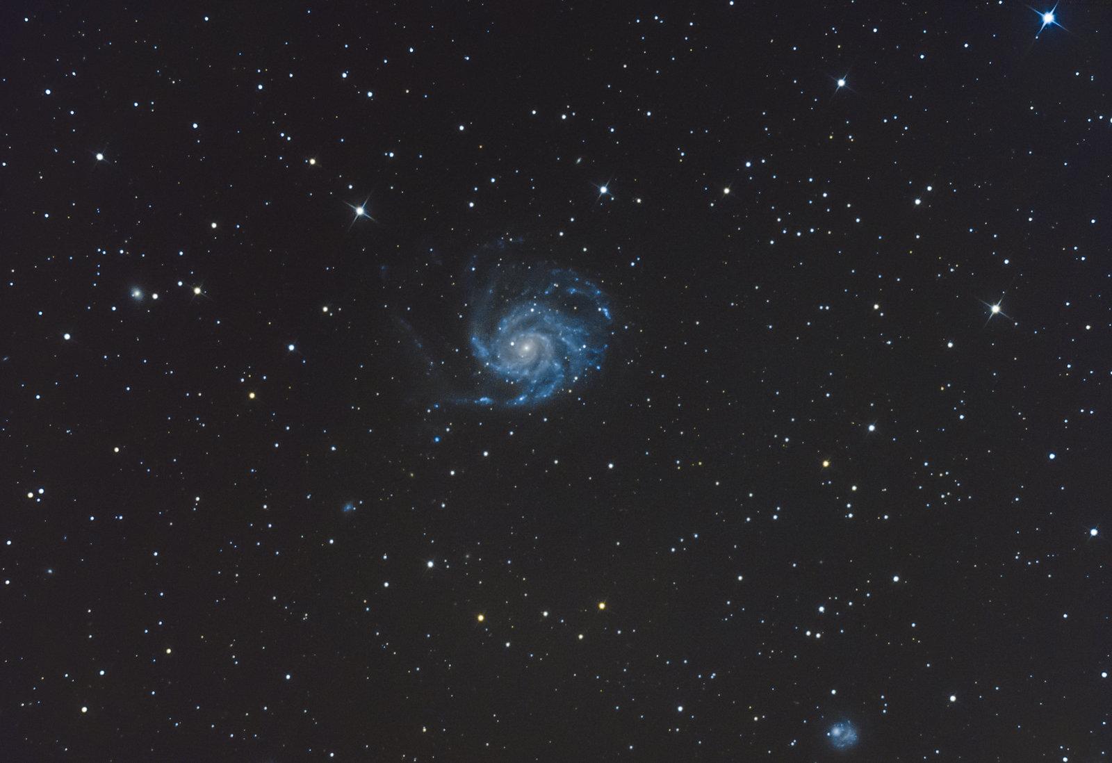M101_surówka_obr-4.jpg