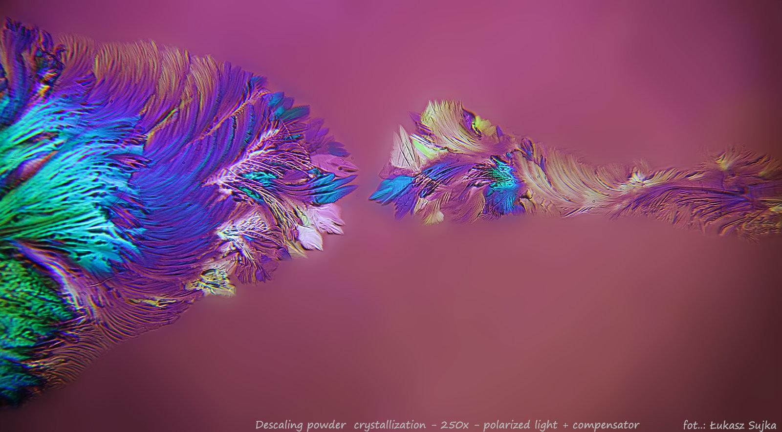 5a74b99e215b8_descalingpolarizedcompenator1.thumb.jpg.a6c1ee5033708c664156e68991f80656.jpg