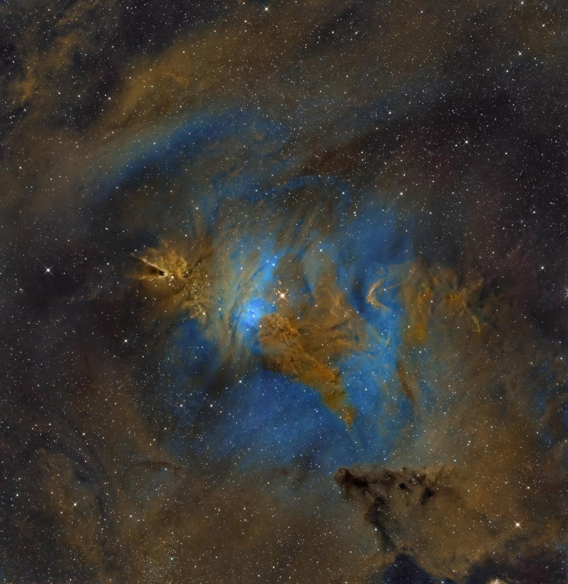 NGC-2264-en.jpg
