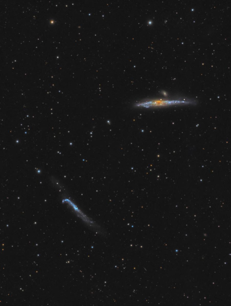 NGC4631-LRGB 2.jpg