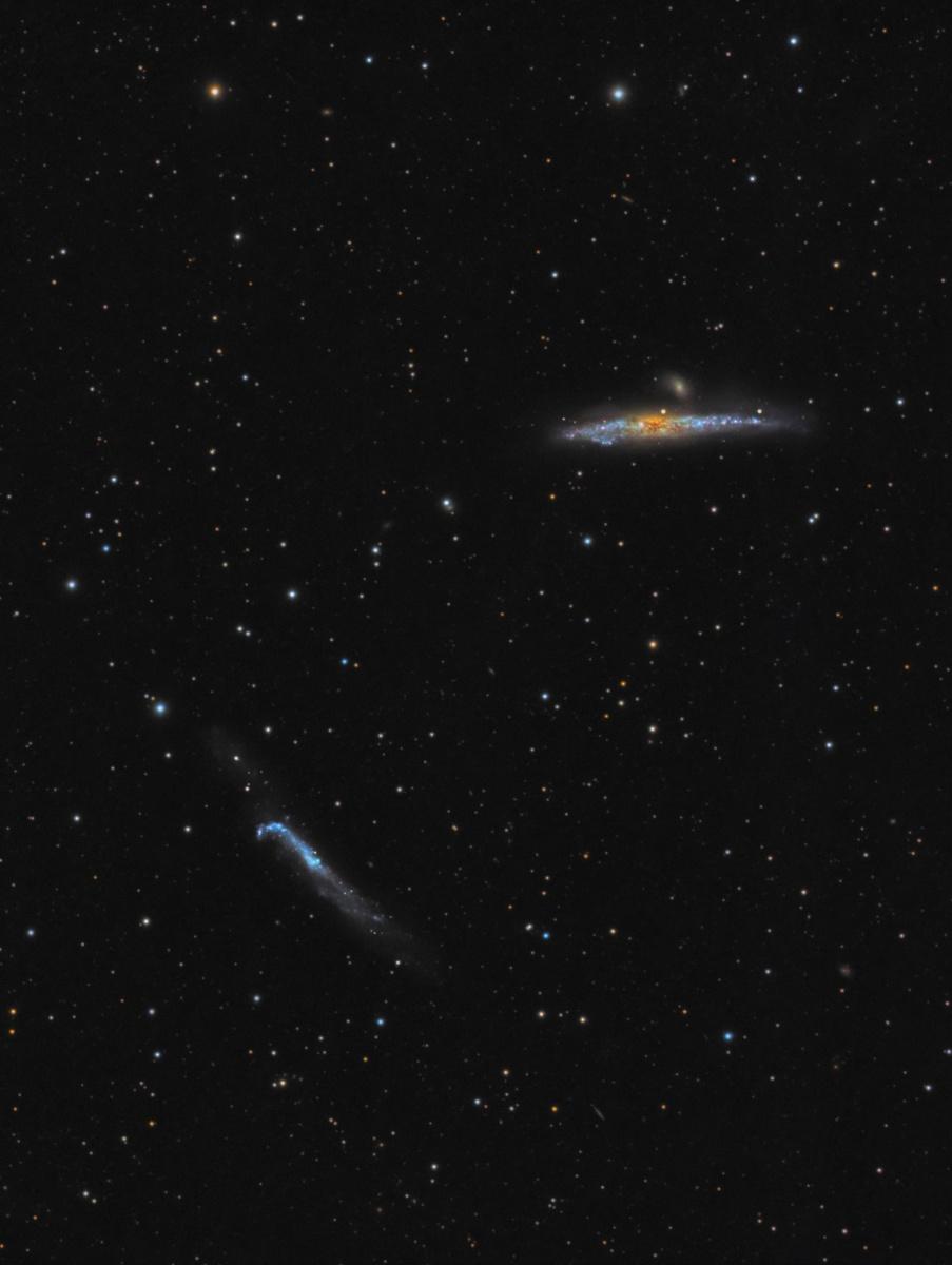 NGC4631-LRGBaa.thumb.jpg.89b906e487c85da3105ec6436dfaa84e.jpg