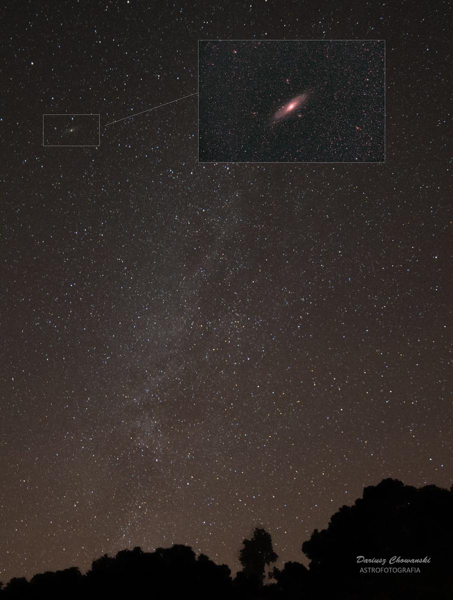 Andromeda 14mm — kopia — kopia.jpg