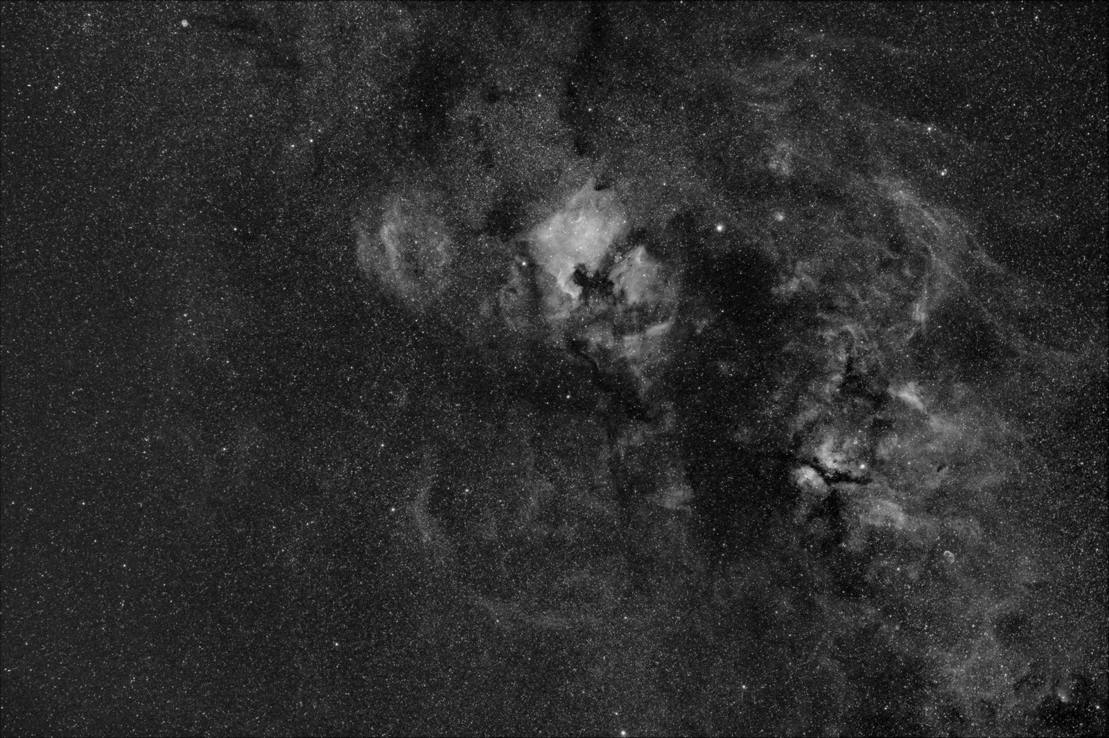 CYGNUS HA50MMver2_4small.jpg