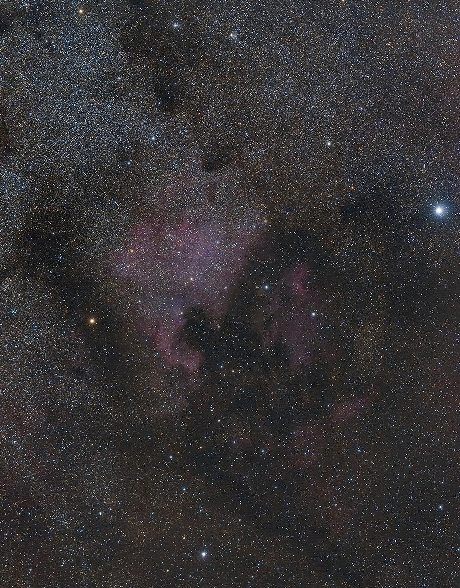 956859556_NGC7000_clean.thumb.jpg.39e1c5bfd441d0b31ae8d7cc1e70b135.jpg