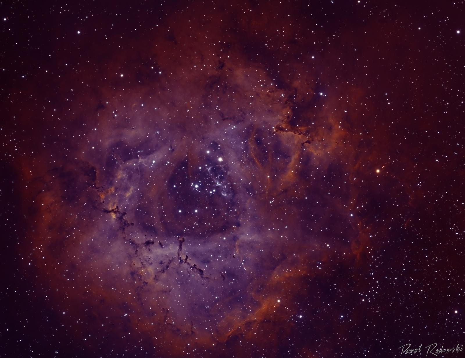 NGC2237_Bicolor_v3_1920_sign.jpg