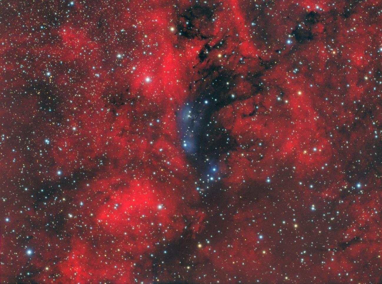 NGC6914_final_v3_Adobe.jpg.e73407f5512184e29916e2fb79087f2d.jpg