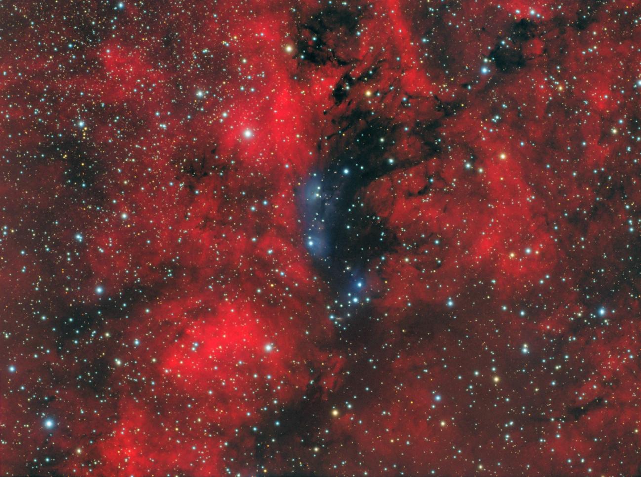 NGC6914_final_v3_sRGB.jpg.a44213e87e1ef0a37fc8fb185fb59c65.jpg