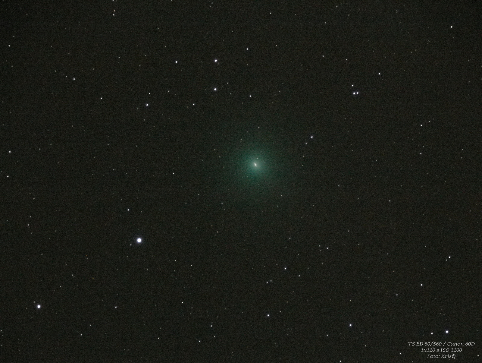 Kometa C  2018 Y1 (Iwamoto).jpg