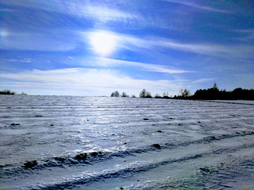 Styczniowa zima.png