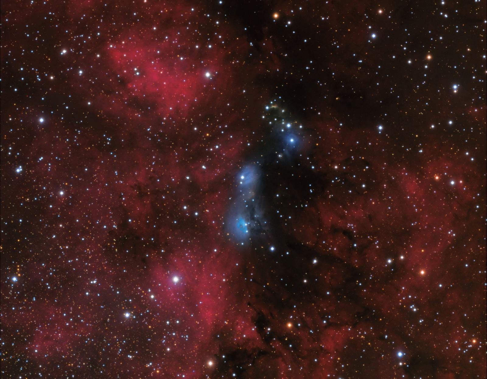 1764597687_NGC6914VdB131132grzedziel.thumb.jpg.b4bfd03b58e5ef188082806cee6f6fff.jpg