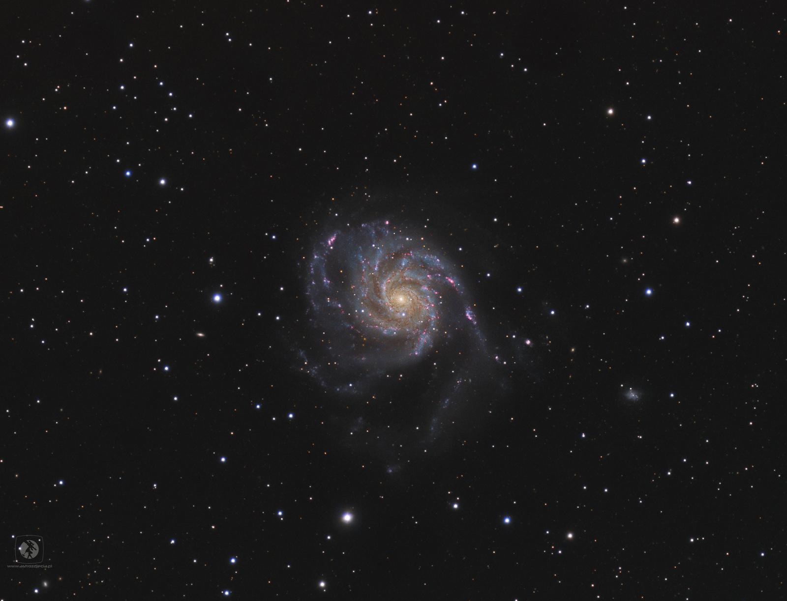 M101-gotowe3.jpg