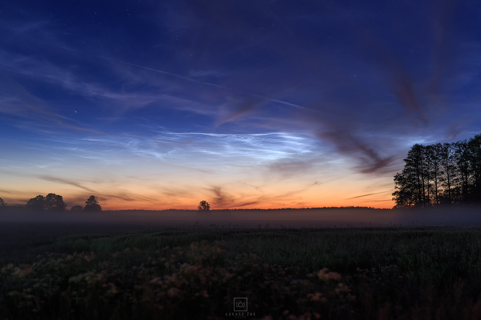 NLC_03_05_2019.png