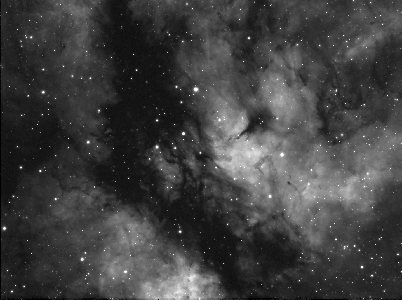 ic1318png.png