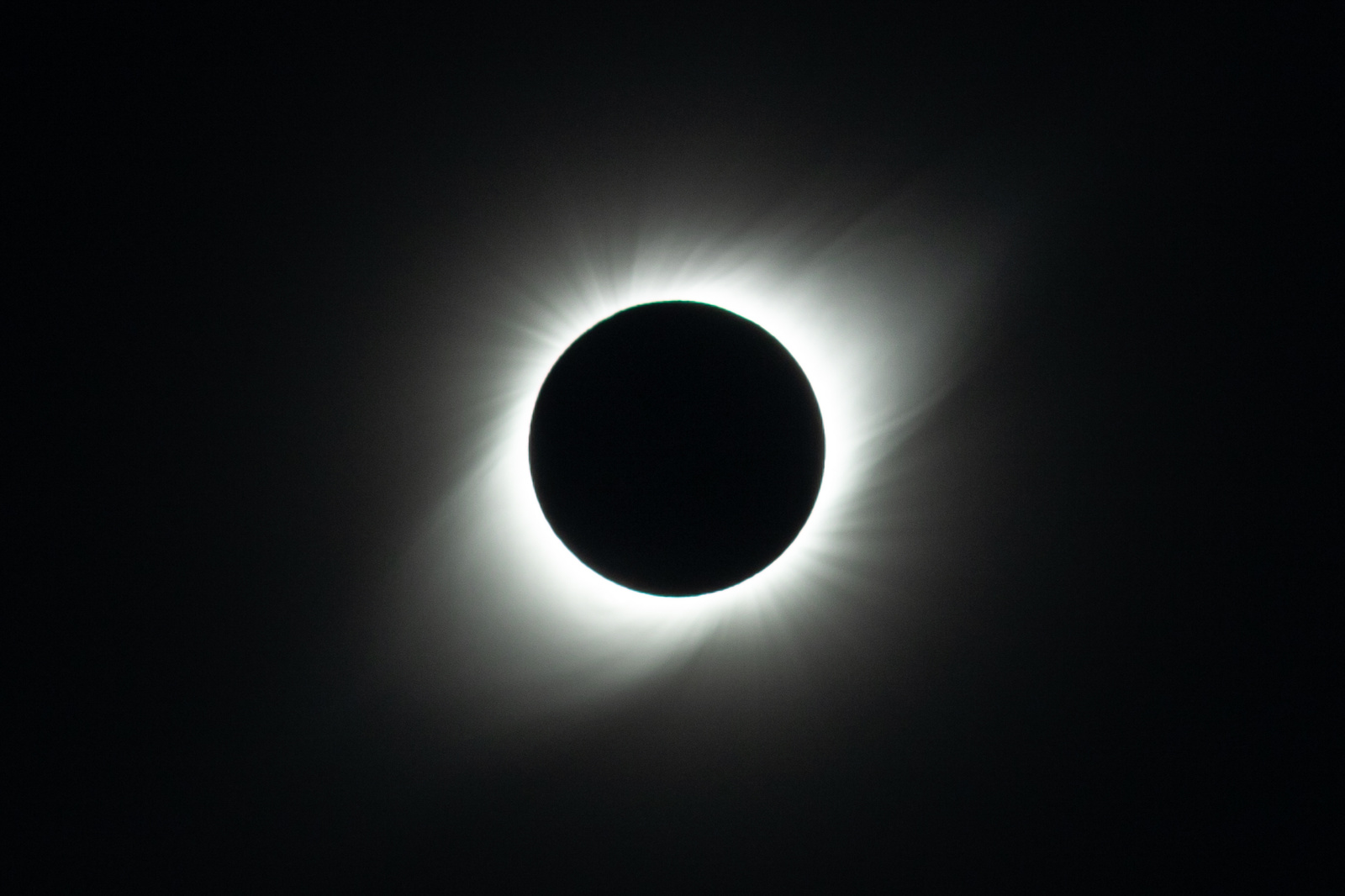 _MGL8538-corona.thumb.jpg.feaa5b817af2ff1b725f73600c52572a.jpg