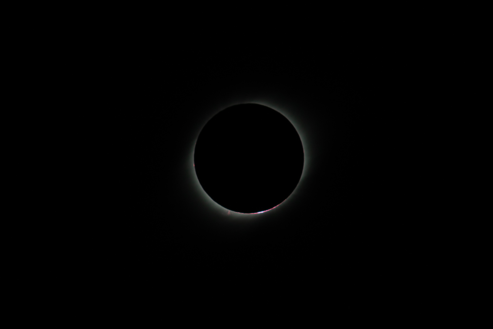 _MGL8555-prominences.thumb.jpg.26cee6268877a92afce7f3cf3f8dfed5.jpg