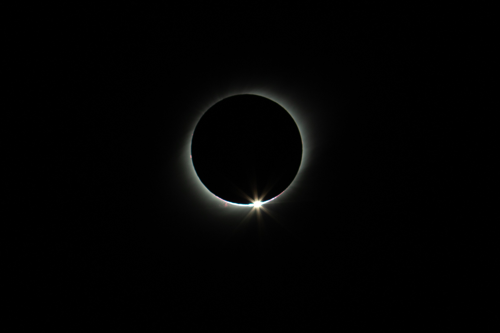 _MGL8582-diamond-ring.thumb.jpg.7592f23e04dacc6835cd0246902c21ad.jpg