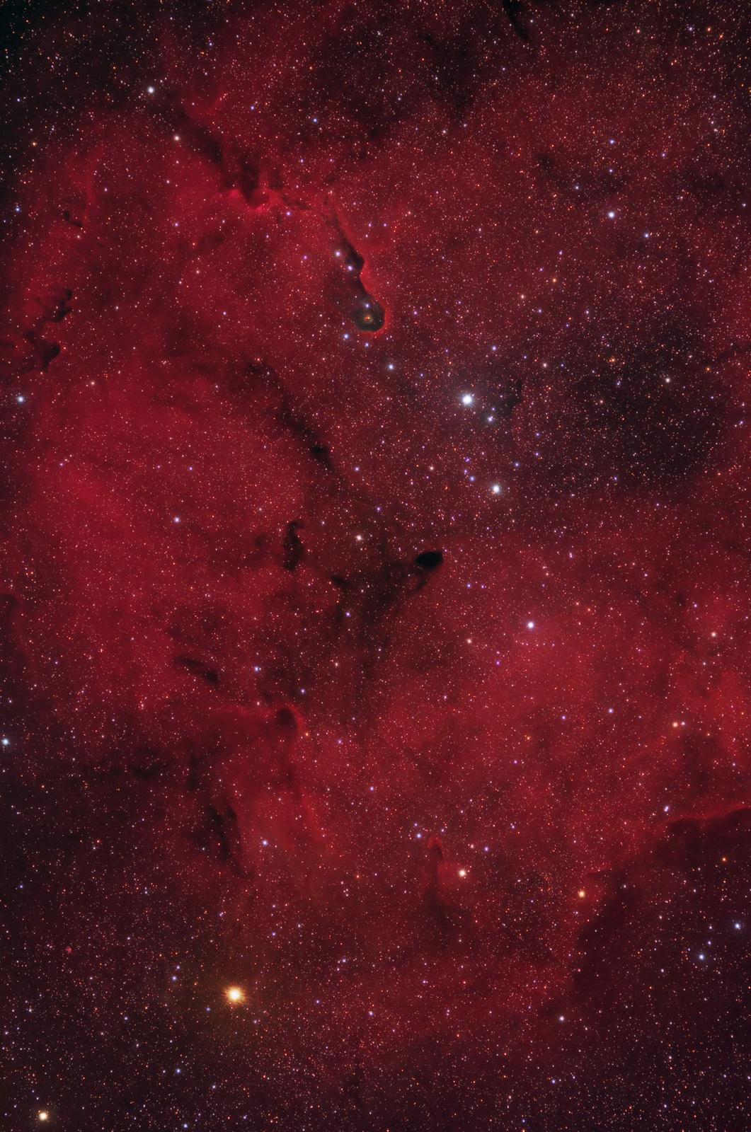 IC1396_L.jpg