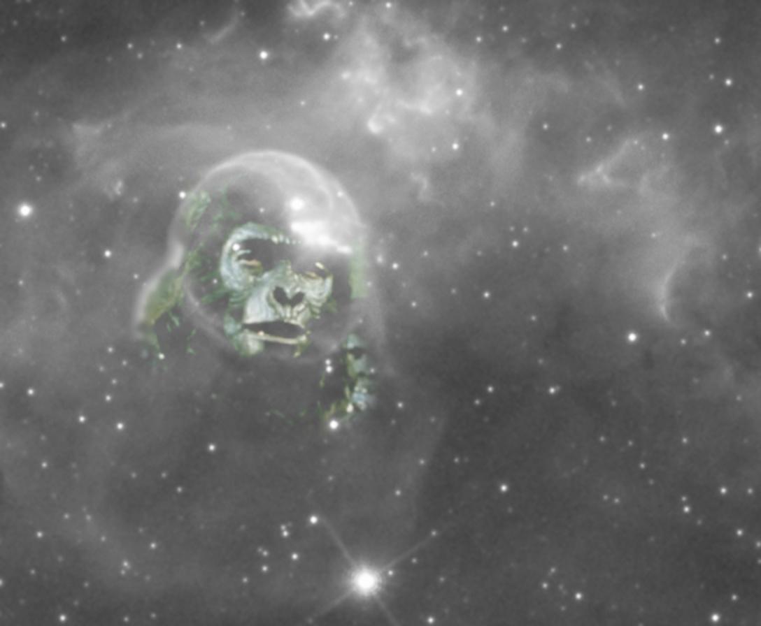 PlanetaMalp.jpg