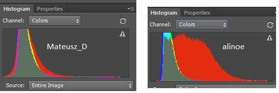 histogram.jpg.910feb3a1b6eadecbe4fceb7e6f9db9f.jpg