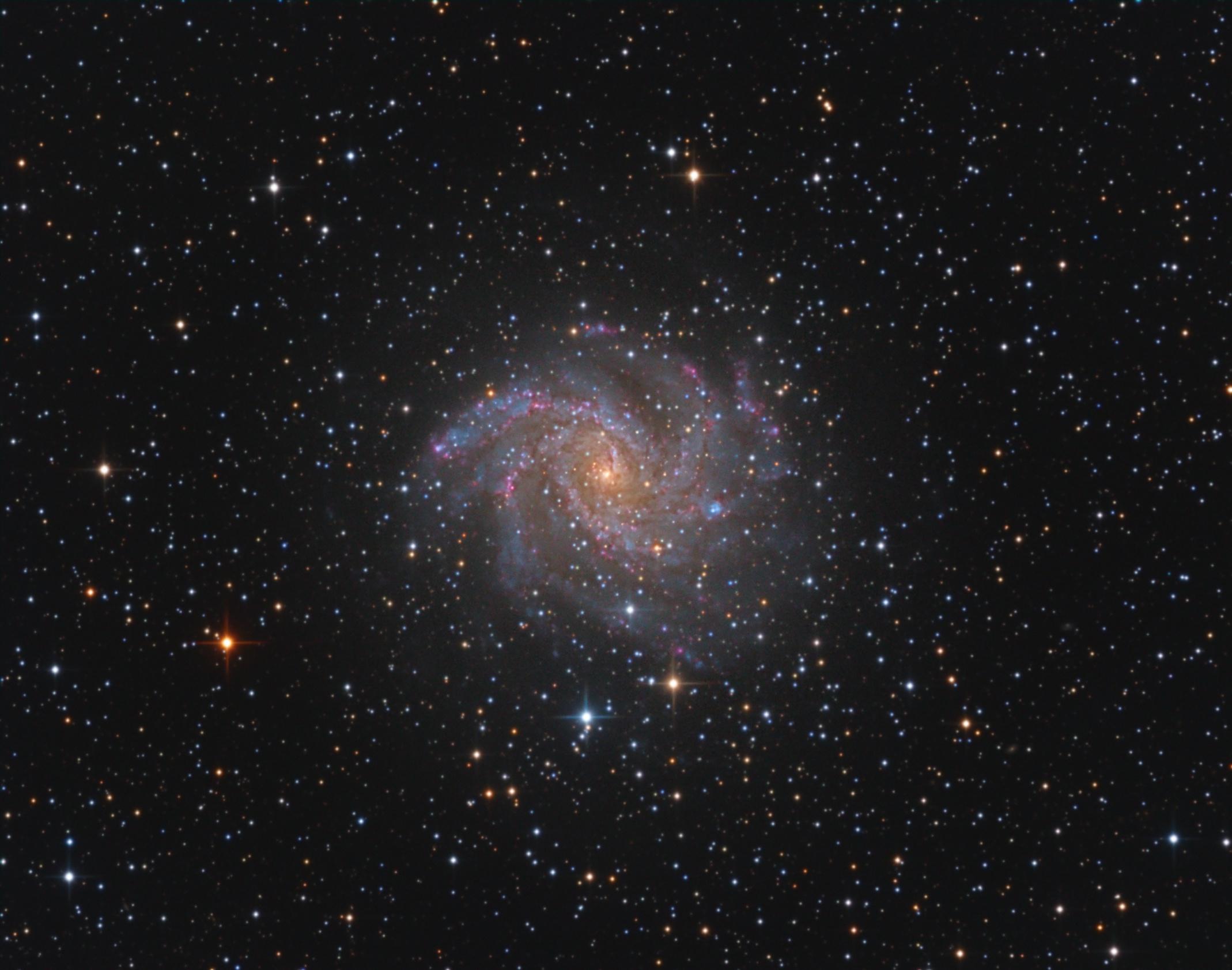 NGC 6946 galaktyka Fajerwerk