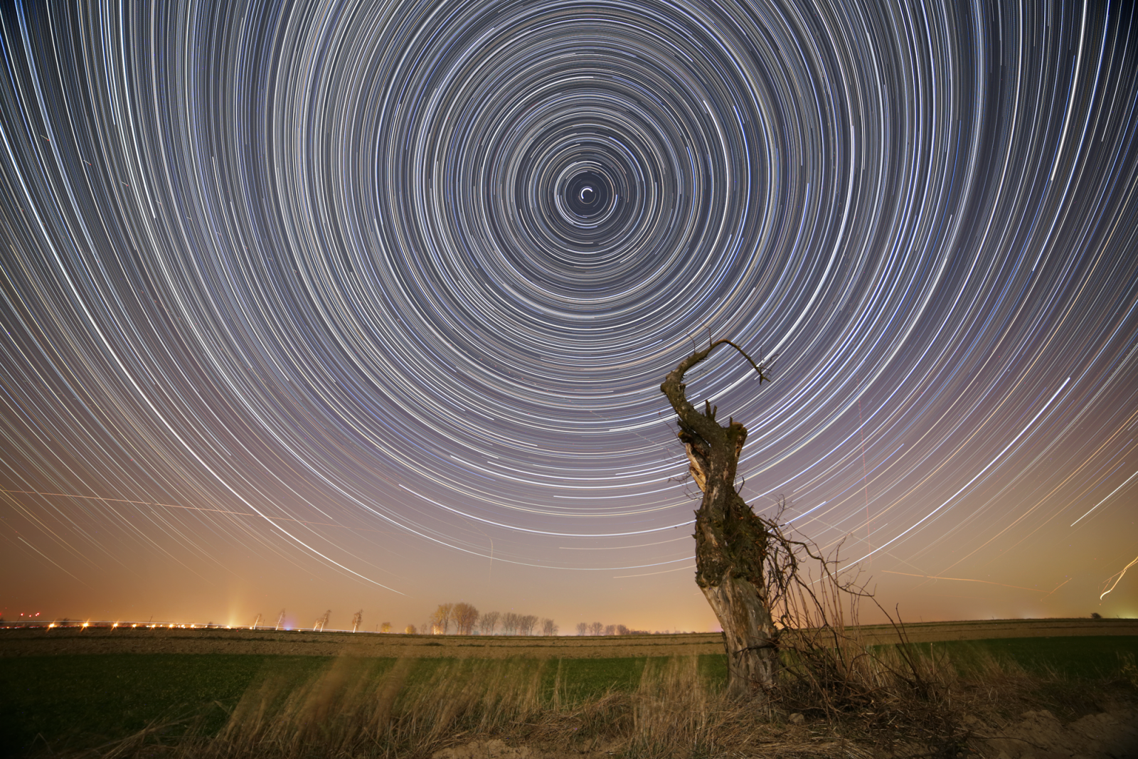547881543_startrails06.thumb.png.0989c349459dfcdedca0667c7350134d.png