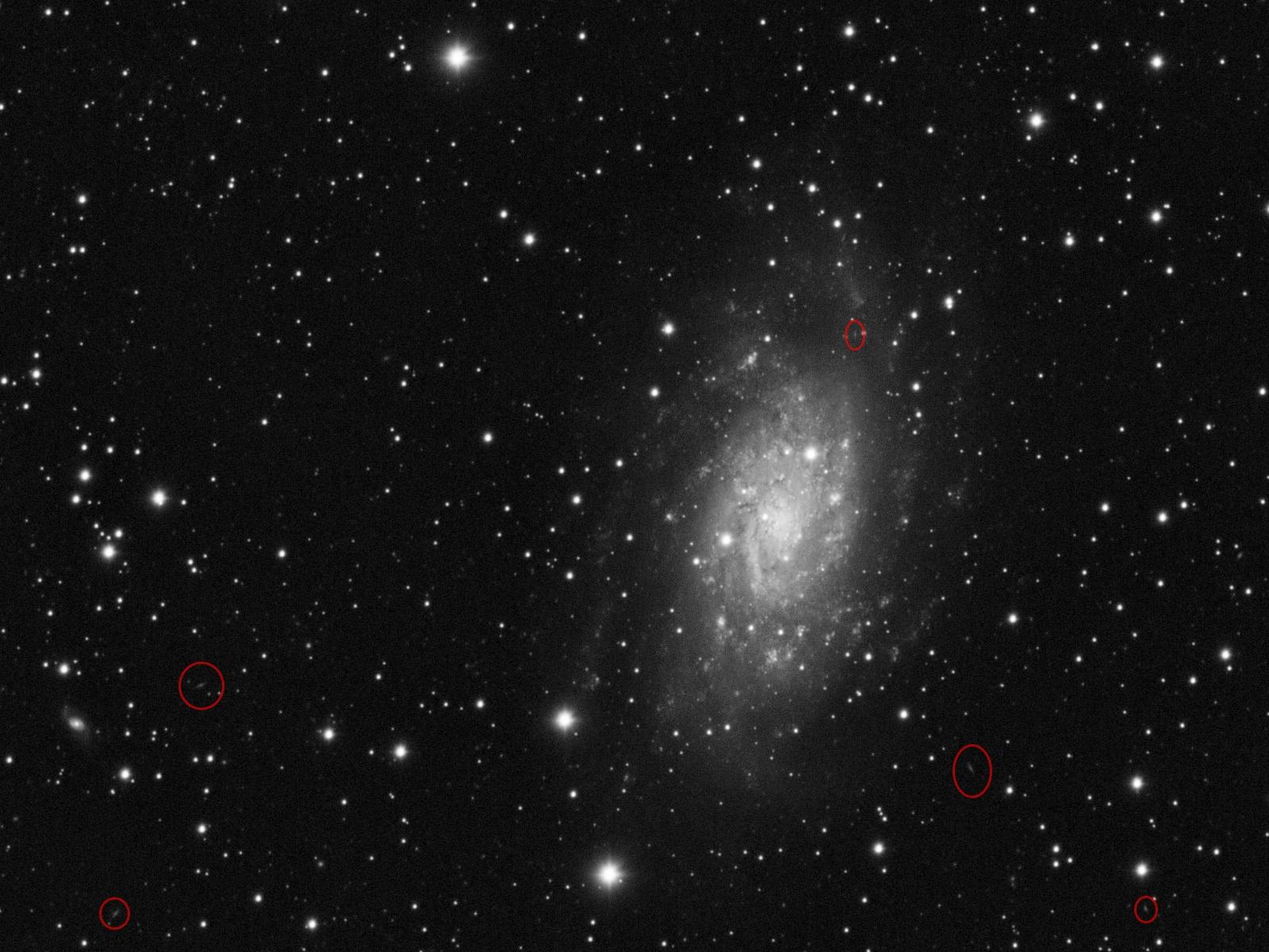 NGC2403_crop.jpg