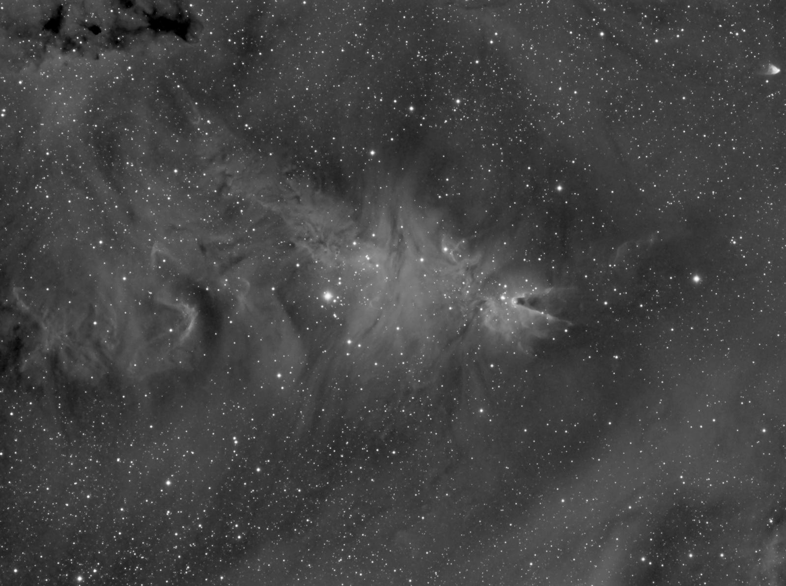 831280587_NGC2264.thumb.jpg.d4555fc35db34562611cc5e016f2cd3d.jpg
