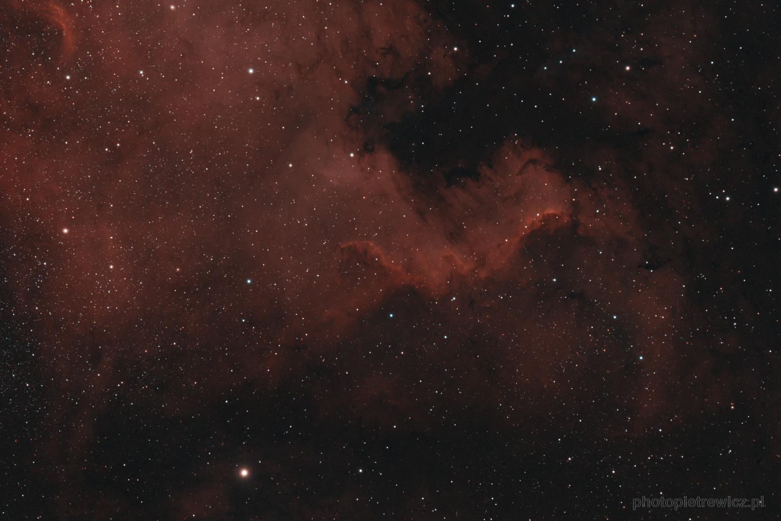 Cygnus_wall_fb.thumb.jpg.34dda1cbe77db59878c734854501b50c.jpg