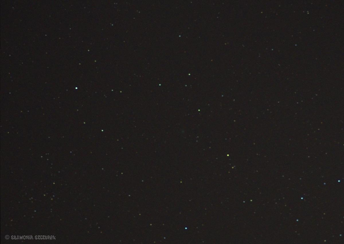 C2019Y1z1.jpg