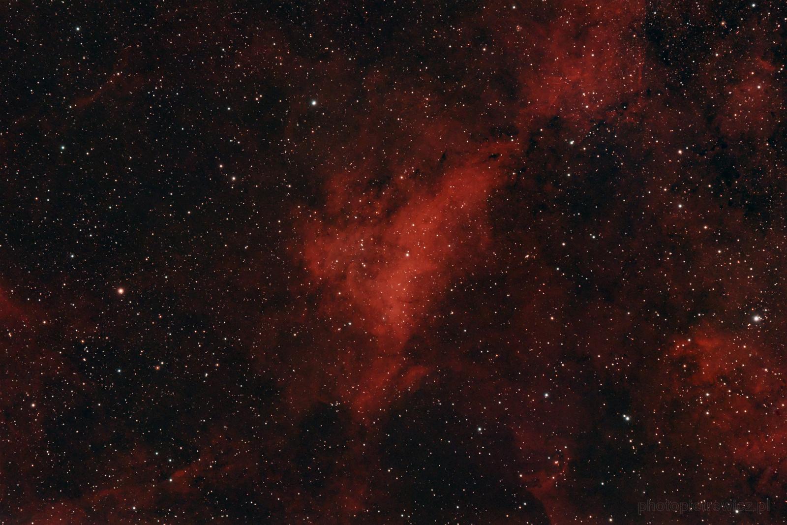IC1318A_fb2.thumb.jpg.165fd222354857b9d7cbc589e6b3c539.jpg