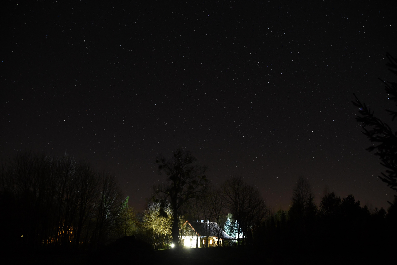 night house1.jpg