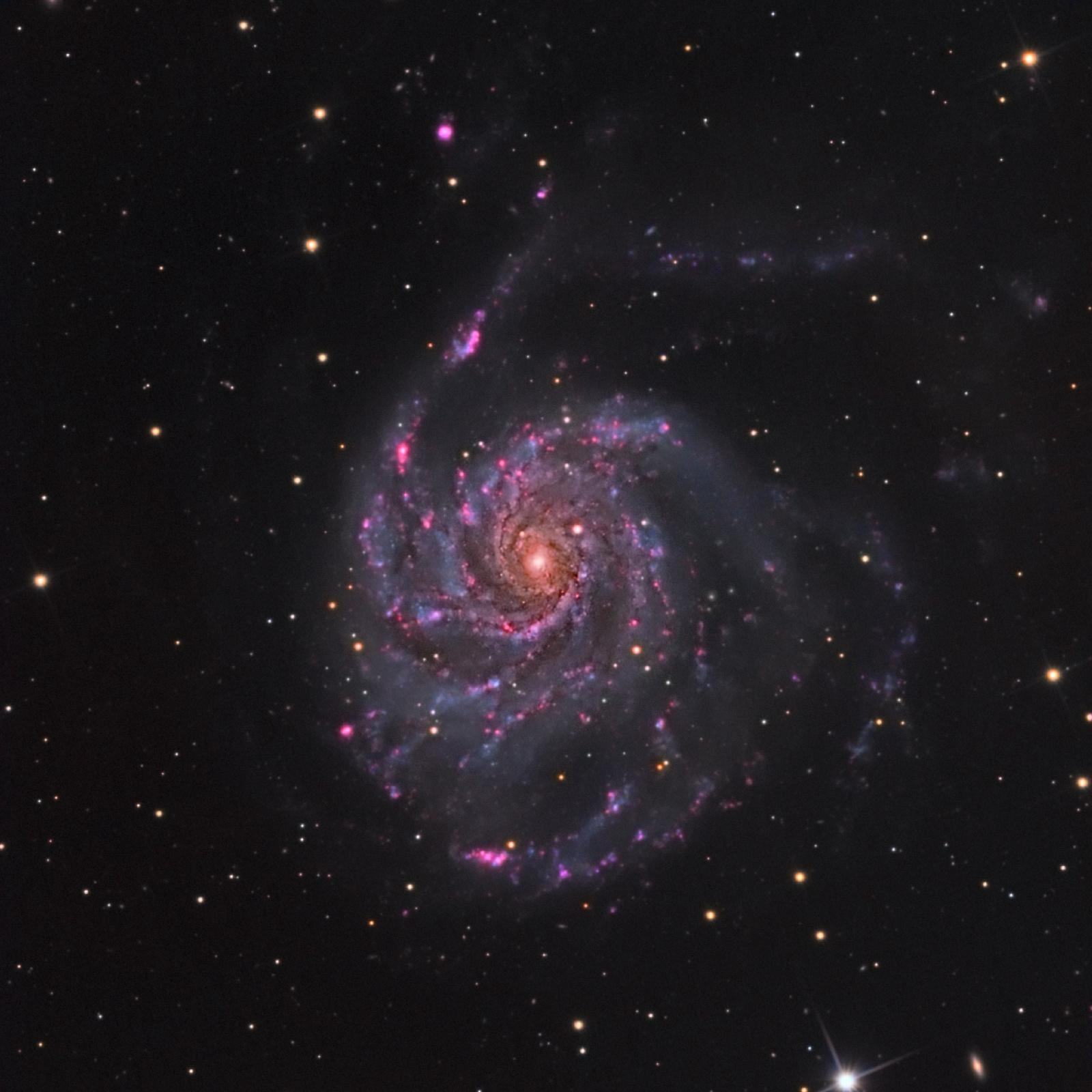 M101_HaLRGB_QHY_AP.jpg