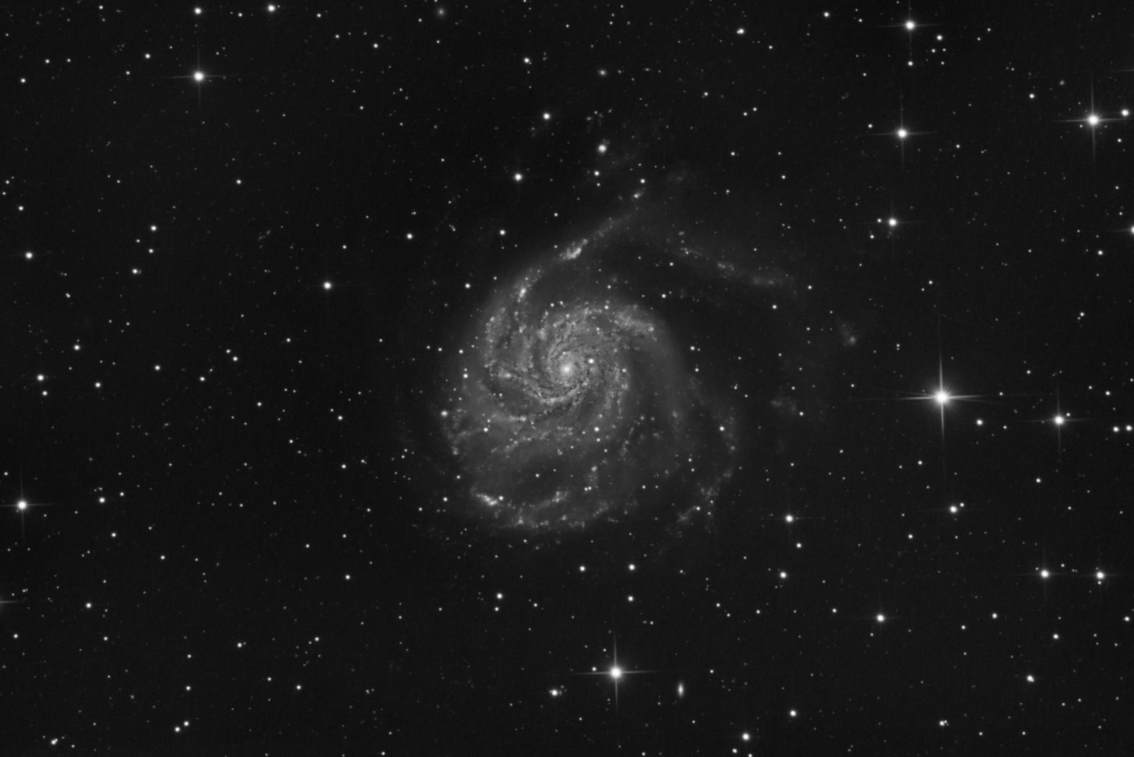 M101_Lum_QHY_AP.jpg