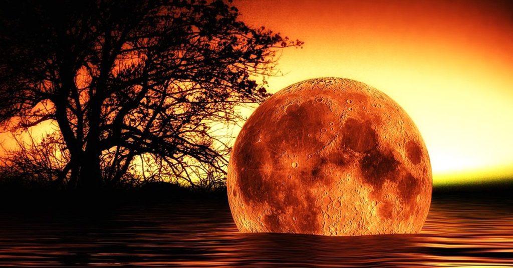 moon.jpg.fbc90c6dfd253baed5bddfe21a9fe702.jpg