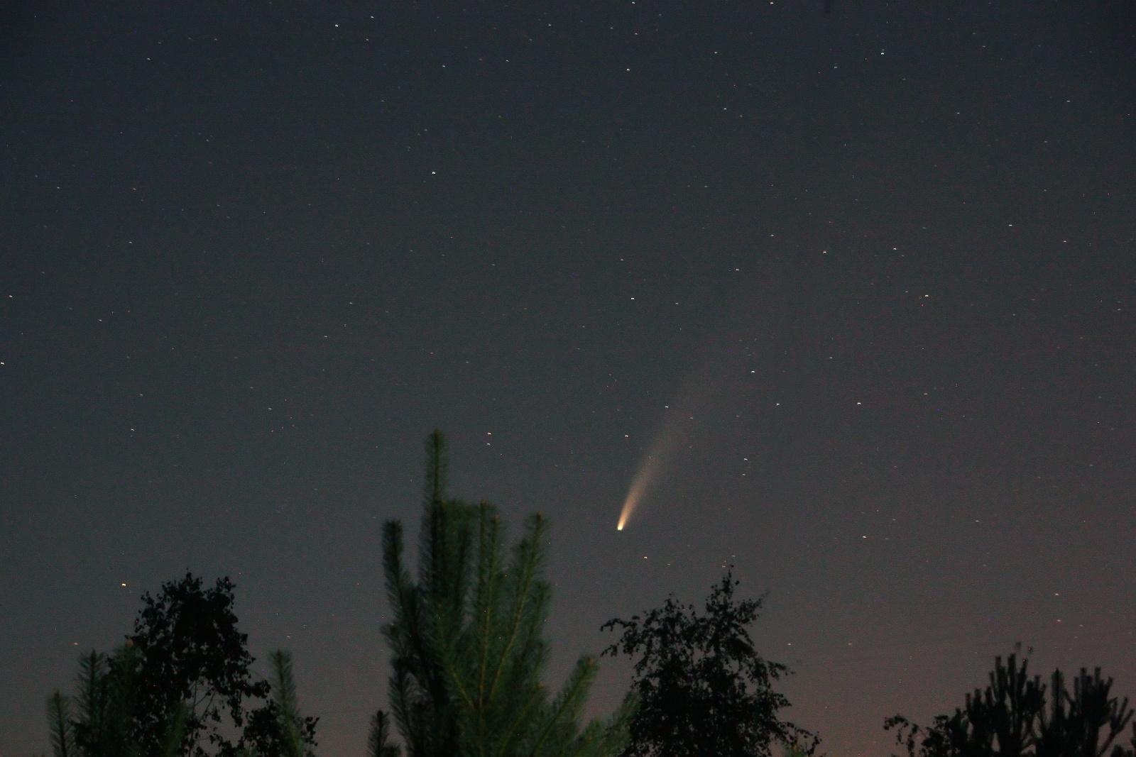 NEOWISE.jpg
