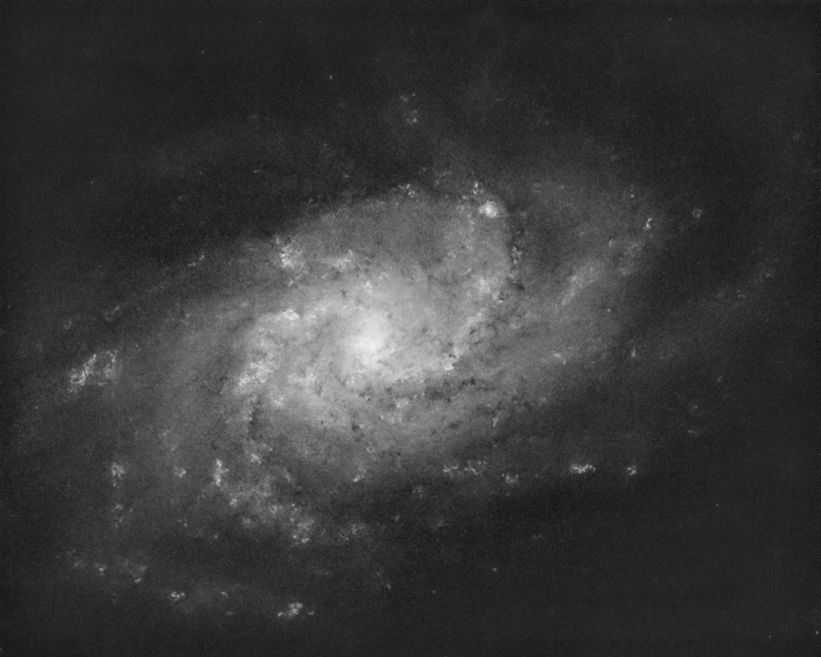 M33_mono_finished_no_stars.thumb.jpg.dd8f6ea78345d5b586fc0646adf96bd2.jpg