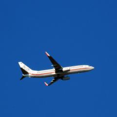 AviatorL