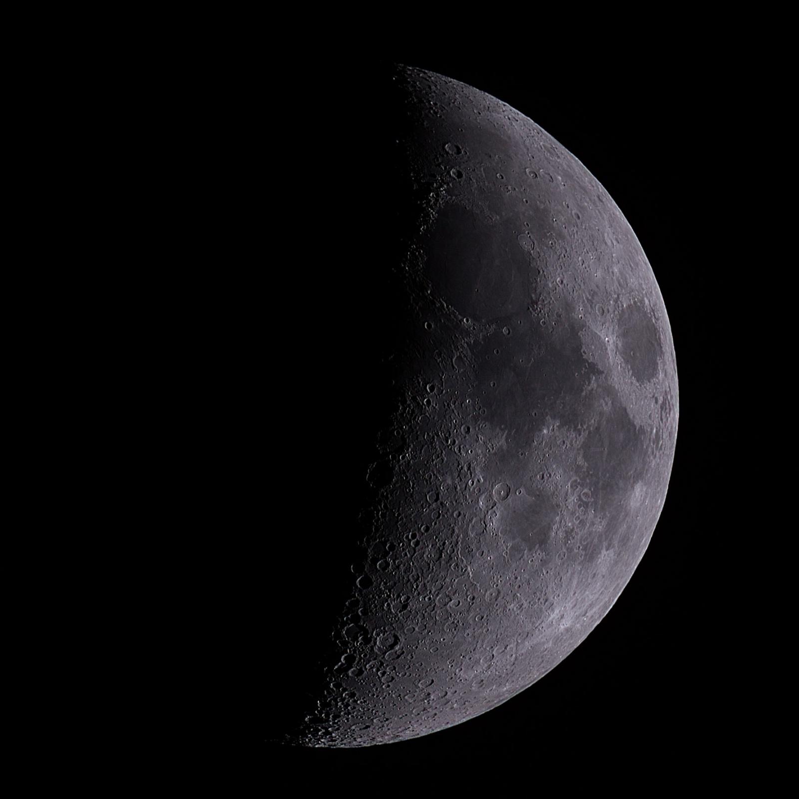 moo-2021-03-20--002.thumb.jpg.4a72682e08b3bb55925bcdb18e019b17.jpg
